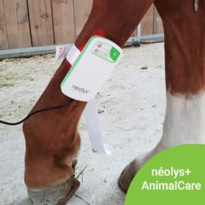 Néolys+AnimalCare – partenaire CRTE ARA